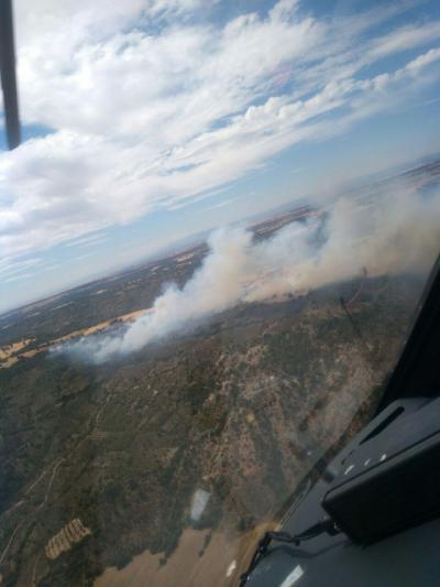 Declarado el nivel 1 en el incendio forestal de Guadalajara