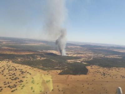 Controlado el incendio forestal de Luciana