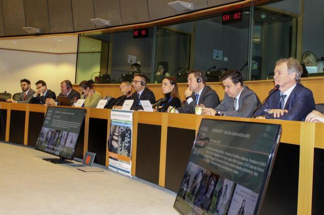 Page reclama en Bruselas incorporar el olivar de secano a ayudas de la PAC