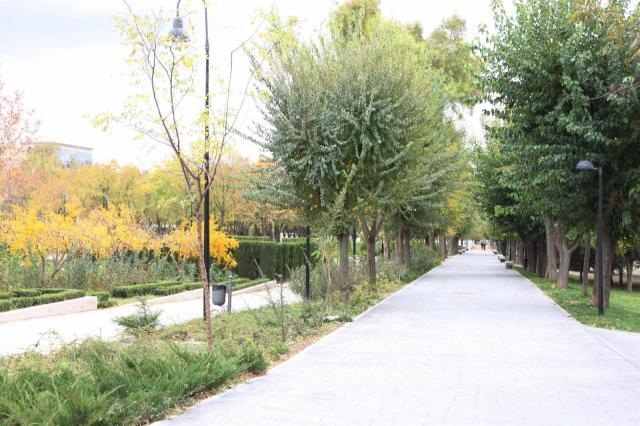 Toledo cierra los parques por la previsión de fuertes rachas de viento