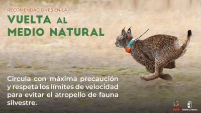 FASE 1 | Consejos para salir al medio natural en CLM