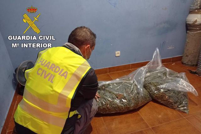 EL CASAR | 14 detenidos por robo con violencia y cultivo de marihuana