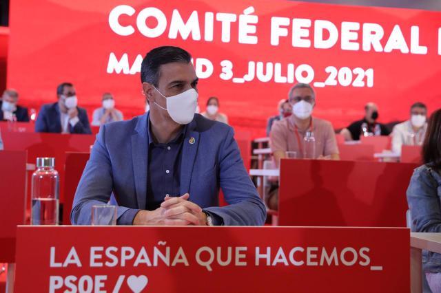 Pedro Sánchez, durante una reunión de los componentes del Comité Federal del PSOE,