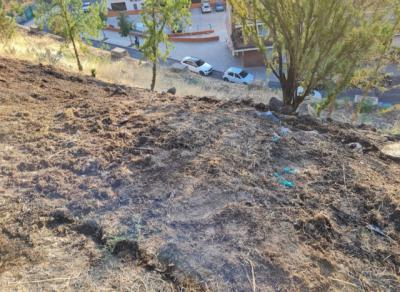 Los bomberos de Toledo sofocan un nuevo incendio registrado en el Parque de la Vega - AYTO TOLEDO