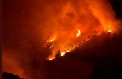 Los incendios forestales afectaron hasta septiembre a 8.230 hectáreas en CLM