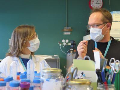 COVID-19 | Importante descubrimiento sobre la vacuna y la cepa británica
