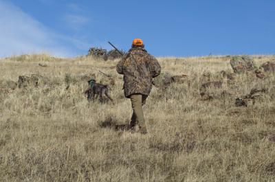 CIERRE PERIMETRAL | Castilla-La Mancha prohibe la entrada y salida de cazadores