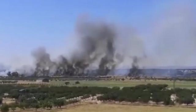 ÚLTIMA HORA   Extinguido el incendio forestal en Cebolla