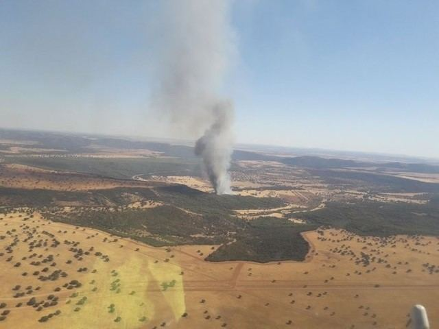 Declarado un incendio forestal en Luciana