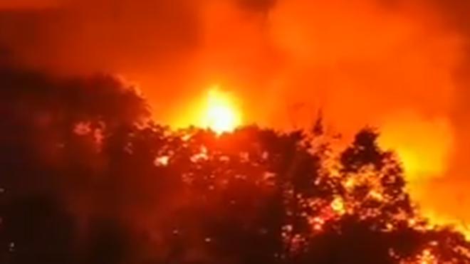 Incendio en Poyales (foto: Twitter)