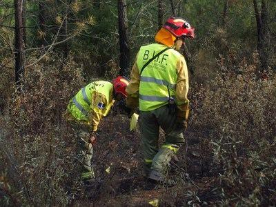CCOO denuncia que los agentes medioambientales de CLM acuden a los incendios con los equipos de protección