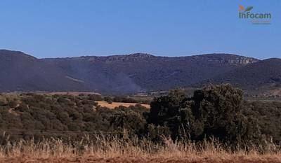 Declarado un incendio en Espinoso del Rey (Toledo)