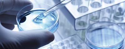 Aprobados más de 2 millones la contratación de investigadores y tecnólogos en la región