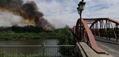 Declarado un incendio en una isla del río Tajo en Talavera