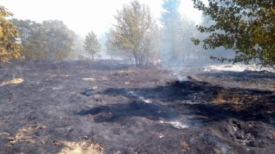 A las 21:05 se ha extinguido el fuego de la isla del Tajo