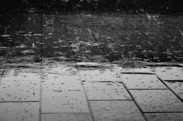 Incidencias por la lluvia en Pepino, Cebolla y Cazalegas