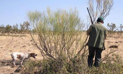 Fallece un cazador en Maqueda tras dispararse de forma accidental