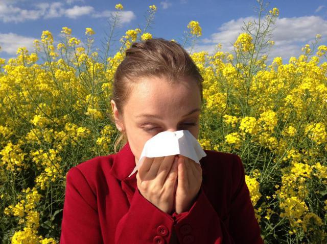 SALUD | ¿Eres alérgico al polen ? Este acuerdo te interesa