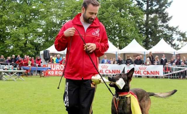 El talaverano Francisco José Romo y su perro Ankor participan en el Mundial de Pastor Belga