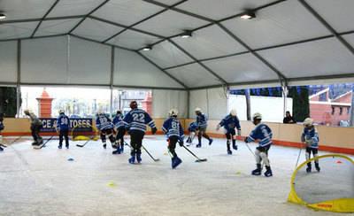 La pista de patinaje sobre hielo amplía la apertura y reduce su precio