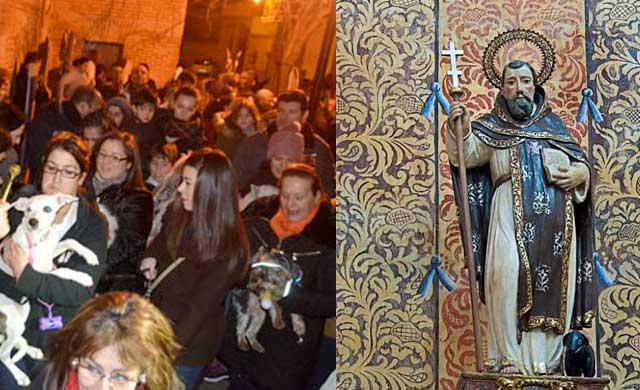 Procesión y bendición de animales para festejar San Antón en Talavera