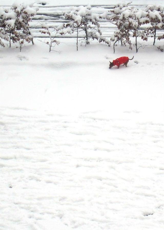 Llega a la Península la nieve y las bajas temperaturas en el fin de semana