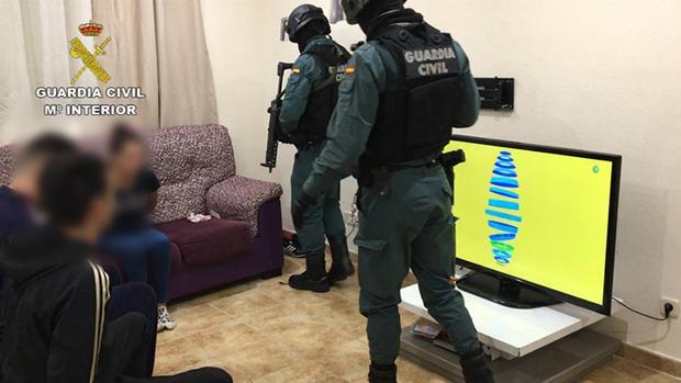 VÍDEO| Operación Brujo, en la provincia de Toledo: 10 detenidos y 9.000 plantas de marihuana incautadas