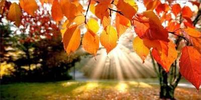 El otoño ha comenzado este jueves a las 16.21 horas y el 30 de octubre se cambiará la hora