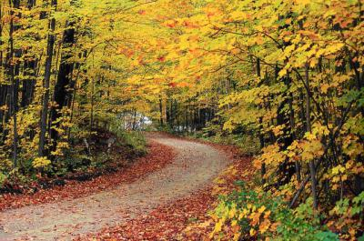 Mañana comenzará el otoño a las 21:21 horas