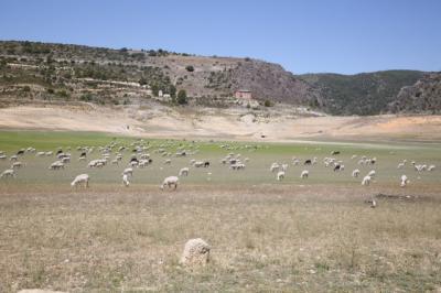 La embalses de cabecera del Tajo, Entrepeñas y Buendía, se siguen secando