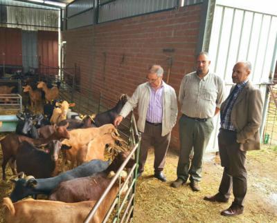 El 31% de los jóvenes que se han incorporado a la agricultura y la ganadería en la provincia a través de las ayudas de CLM son de la comarca de Talavera