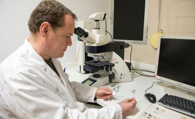 Parapléjicos logra una importante financiación para seguir investigando sobre la esclerosis múltiple