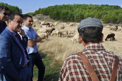 3.500 agricultores y ganaderos reciben hoy más de 5,4 millones de euros en ayudas