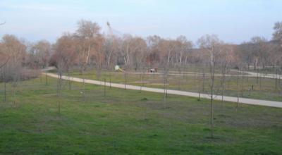 Seguridad en los parques periurbanos, asfaltado de calles y nuevos espacios en la UCLM Talavera