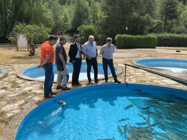La conservación de la trucha común es la principal labor de la piscifactoría 'Rincón de Uña'