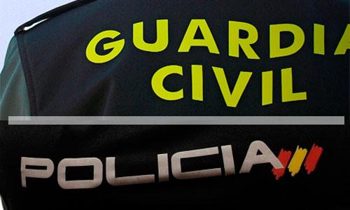 Las Cortes aprueban con la abstención del PSOE la resolución del PP que apoya a la Policía y Guardia Civil
