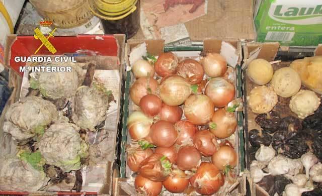 Detenido por vender alimentos caducados y del Fondo Social Europeo