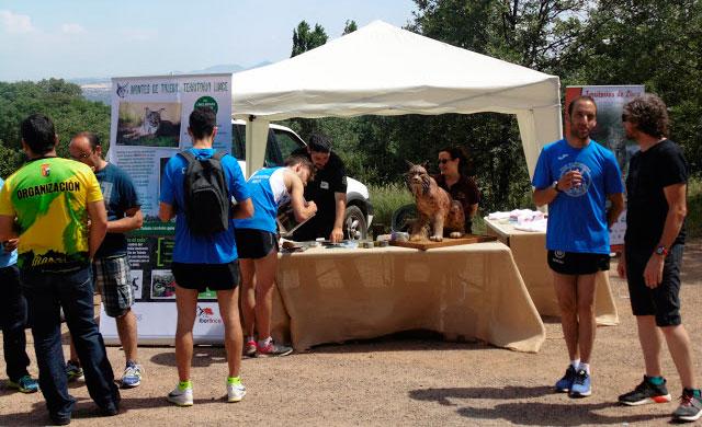 Éxito del punto de información sobre el lince en San Pablo de los Montes