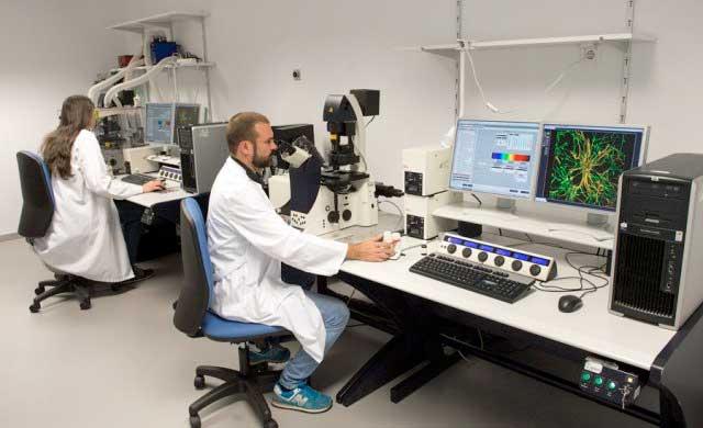 Parapléjicos gestionará el presupuesto de investigación
