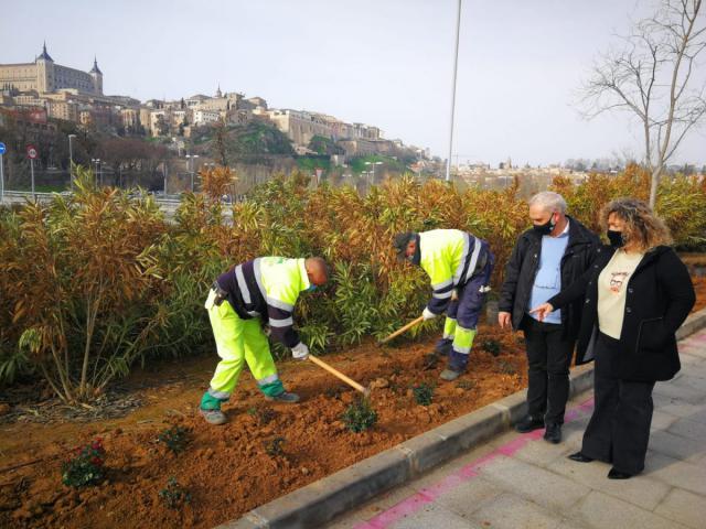 400 ROSALES | Toledo embellece el entorno de la rotonda del Hortelano