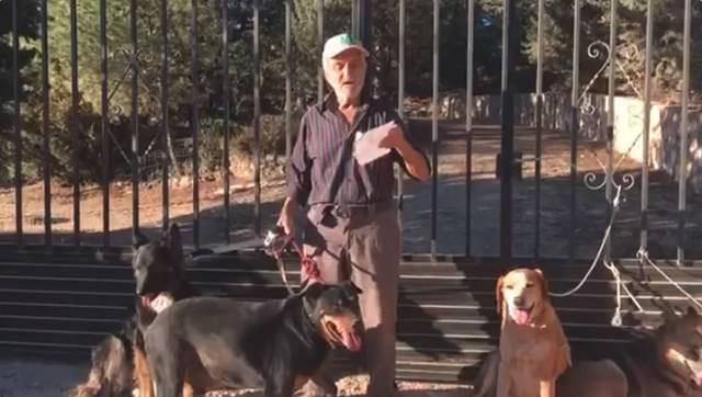 El emotivo mensaje de Santiago, un anciano enfermo, que busca un hogar para sus perros (VÍDEO)