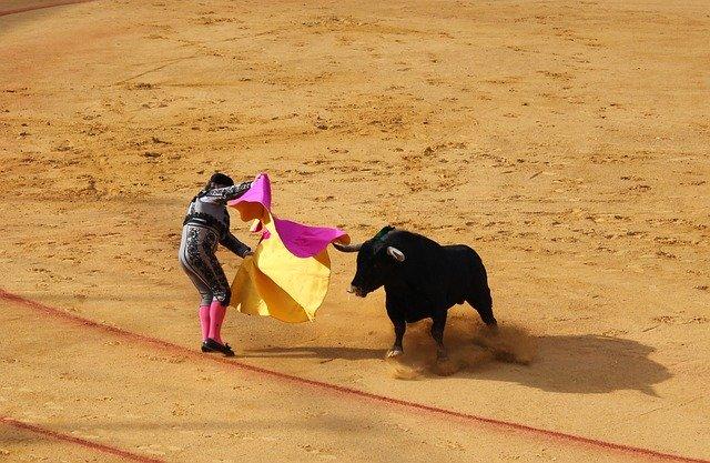 CLM | Page defiende mantener algunos festejos taurinos en verano