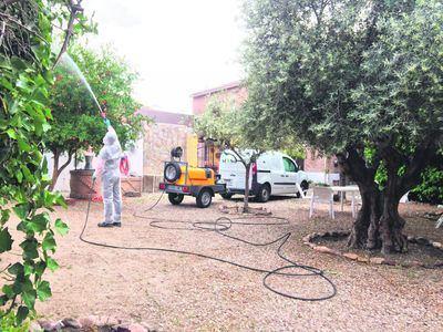 siXsa, la empresa talaverana experta en control de plagas