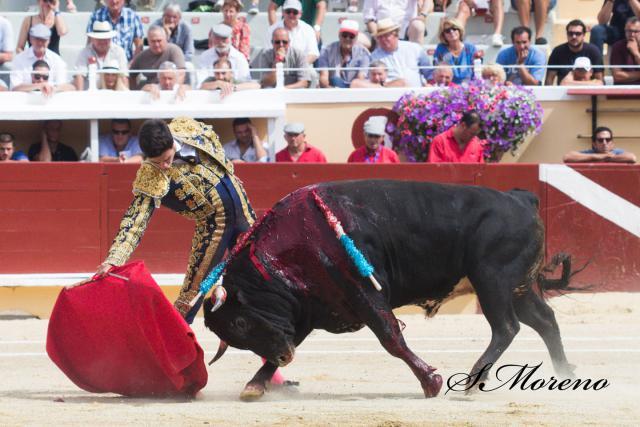 Tomás Rufo vuelve a torear en Francia