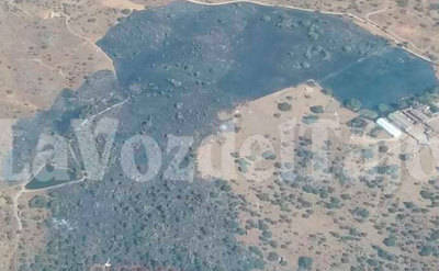 Extinguido el incendio de Mejorada, en 'La Gamonosa