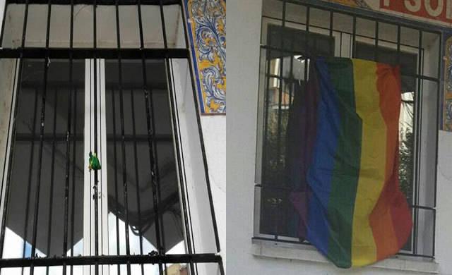 El PSOE denuncia ante la Policía Nacional la quema de la bandera arcoíris