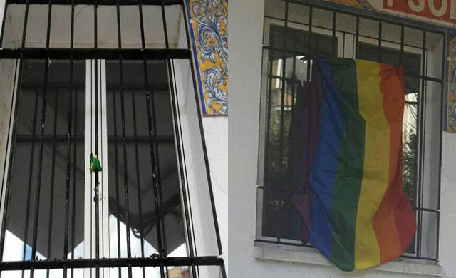 Queman la bandera arcoíris colgada en la sede del PSOE de Talavera