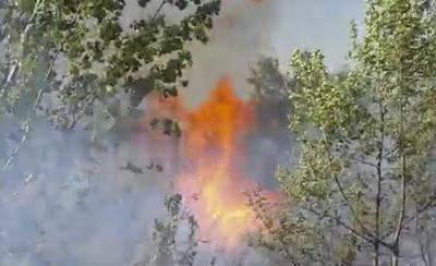 Se incendia una zona de vegetación en el margen del río (VÍDEO)