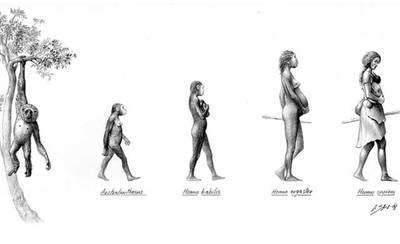 El Museo Etnográfico de Talavera expone la 'Evolución en clave de género'