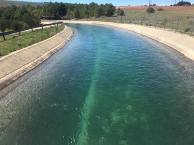 Núñez dice que el PP CLM hablará de agua en la Mesa Regional: